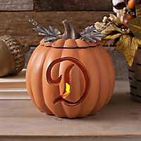 Orange Pre-Lit Monogram D Pumpkin