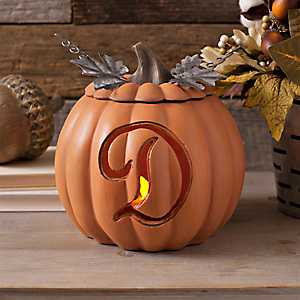 Orange Pre-Lit Monogram D Pumpkin