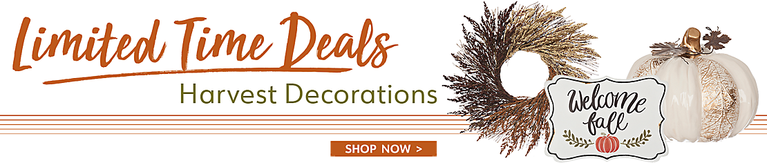 Limited Time Deals - Harvest Decorations