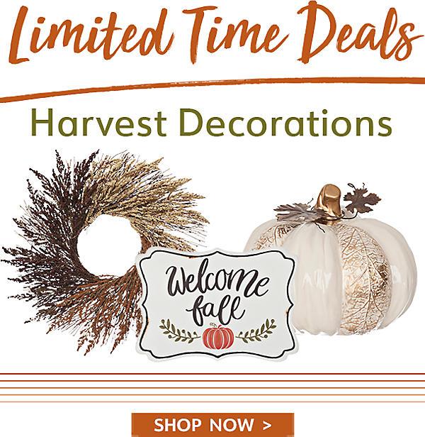 Limited Time Deals - Harvest Decorations