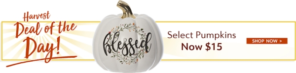 Harvest Deal of the Day -Select Pumpkins Now $15 - Shop Now