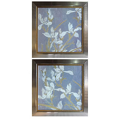 White Iris Flowers Framed Prints, Set of 2