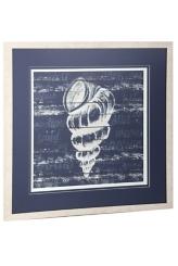 Blue and White Shell Framed Art Print