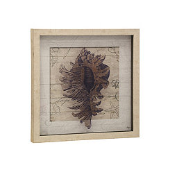 Textured Seashell Shadowbox Framed Art Print