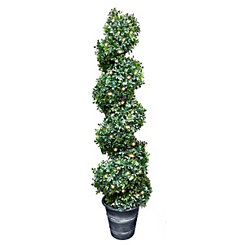 English Boxwood Pre-Lit Spiral Topiary