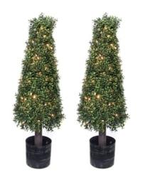 Pre-Lit Boxwood Cone Trees, Set of 2