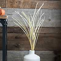 Cream Grass Stem
