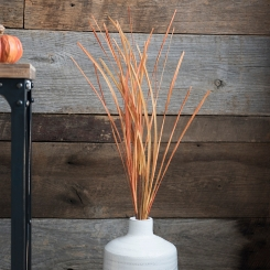 Orange Grass Stem