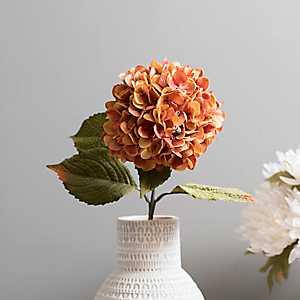 Apricot Fall Hydrangea Stem