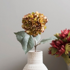 Green Fall Hydrangea Stem