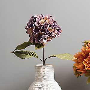 Purple Fall Hydrangea Stem