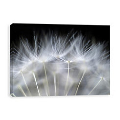 Blow It Coated Canvas Art Print