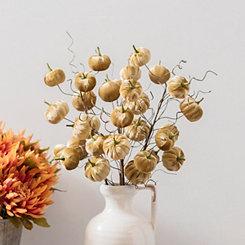 Amber Velvet Pumpkin Stem