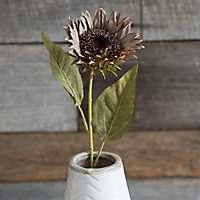 Natural Fall Sunflower Stem