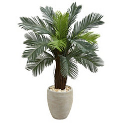 Cyads Tree in Oval Planter, 4.5 ft.