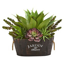 Succulent Garden Greenery in Wood Planter