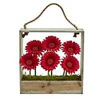Red Gerber Daisy Arrangement in Hanging Planter
