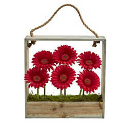 Red Gerber Daisy Arrangement in Hanging Planter