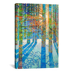 After the Snow Fell Canvas Art Print