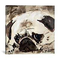 Percival Canvas Art Print