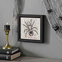 Eyeball Spider Framed Print