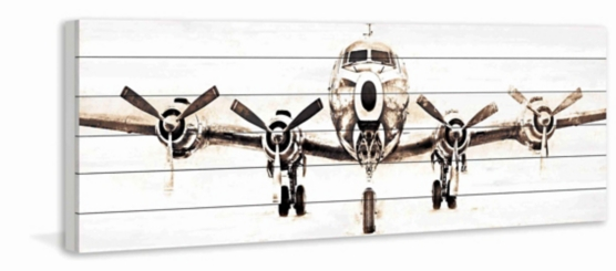 White Plane Wood Art Print