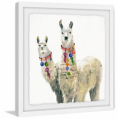 White Llamas Framed Art Print