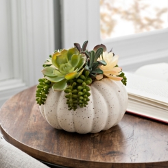 Cream Pumpkin Succulent Floral Arrangement