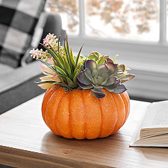 Orange Pumpkin Succulent Floral Arrangement