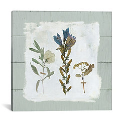 Pressed Flowers on Shiplap I Canvas Art Print