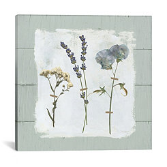 Pressed Flowers on Shiplap II Canvas Art Print