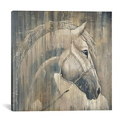 Majestic Horse Canvas Art Print