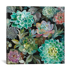 Floral Succulents Canvas Art Print