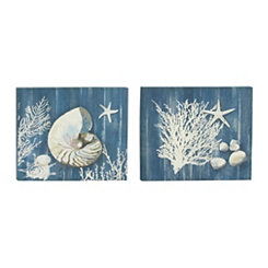 Indigo Shell and Coral Canvas Art Prints, Set of 2