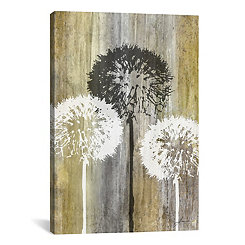Rustic Dandelion Canvas Art Print