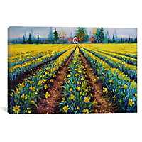 Valiant Field of Daffodils Canvas Art Print