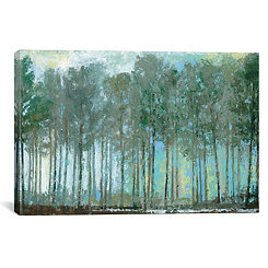 Whisper Woods Canvas Art Print