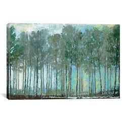 Whisper Woods Canvas Art Print
