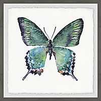 Watercolor Butterfly Framed Art Print
