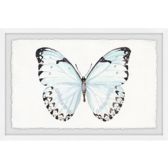 Translucent Blue Wings Framed Art Print