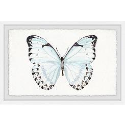 Translucent Blue Wings Framed Art Print