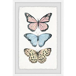 Butterfly Trio Framed Art Print