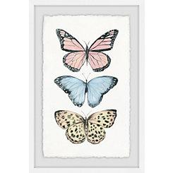 Butterfly Trio Framed Art Print