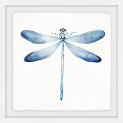 Pastel Blue Dragonfly Framed Art Print