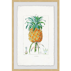Botanical Pineapple Framed Art Print