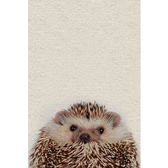 Cute Porcupine Canvas Art Print