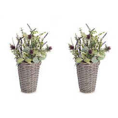 Herb and Thistle Twig Wall Basket, Set of 2