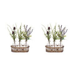 Herb and Thistle Bottle Arrangements, Set of 2