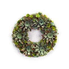 Succulent Swirl Wreath