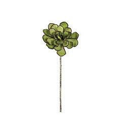 Green Succulent Stems, Set of 6